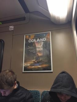 18-03-10 Simone Geißler Sichtung ÖDLAND-Poster